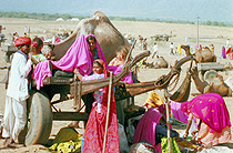 Pushkar Fair, Rajasthan, India